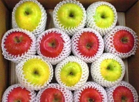 赤いりんごが「サンふじ」、黄色が「シナノゴールド」