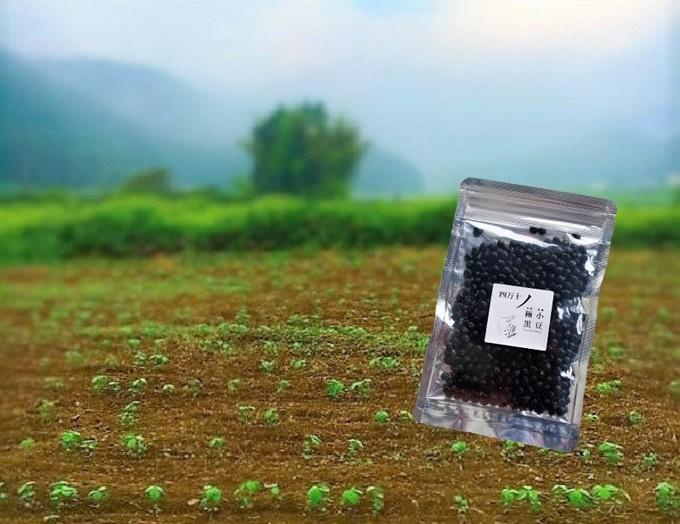 養分たっぷりの土壌で育つ豆は健康成分が豊富