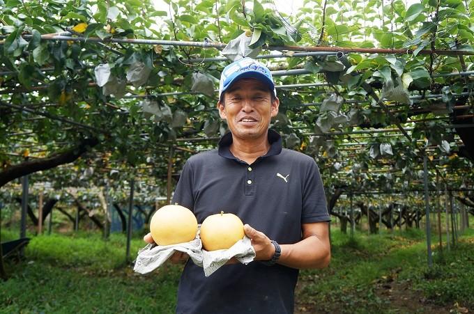 大きさとあふれ出る果汁はまさに梨の王様
