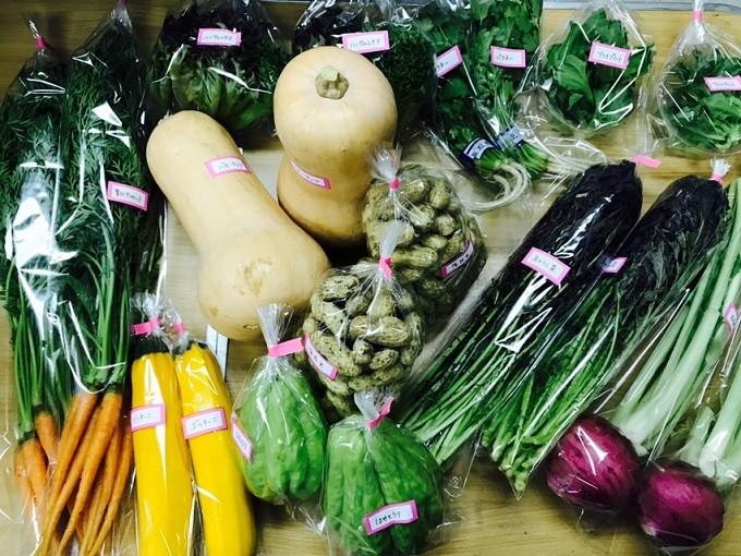 配送野菜イメージ(野菜の種類は季節によって異なります)