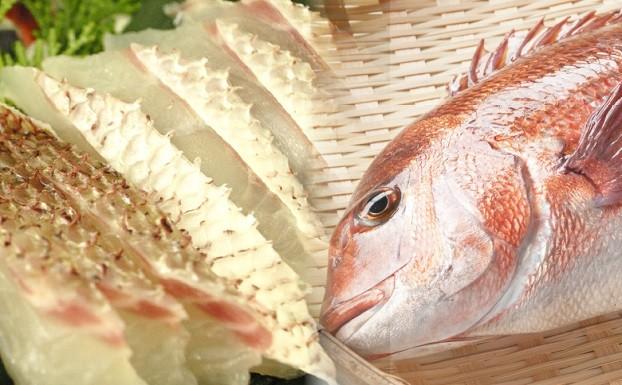 本場須﨑のブランド鯛「乙女鯛セット」食べやすいフィーレ加工