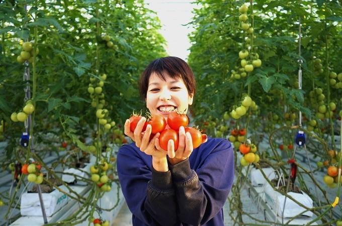 「毎日の笑顔をつくる」そんなトマトです。