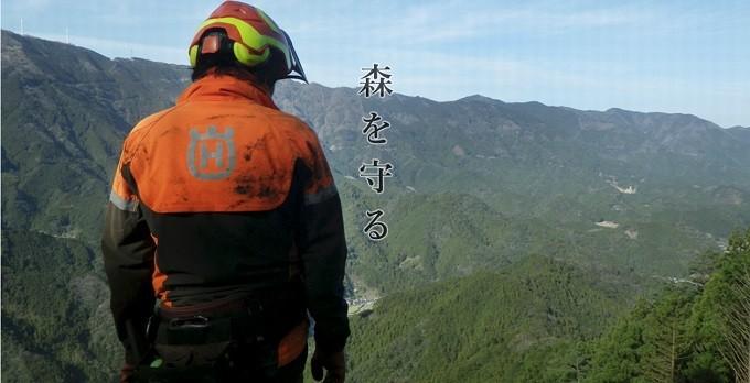 高知県は面積の80%以上が森林です。