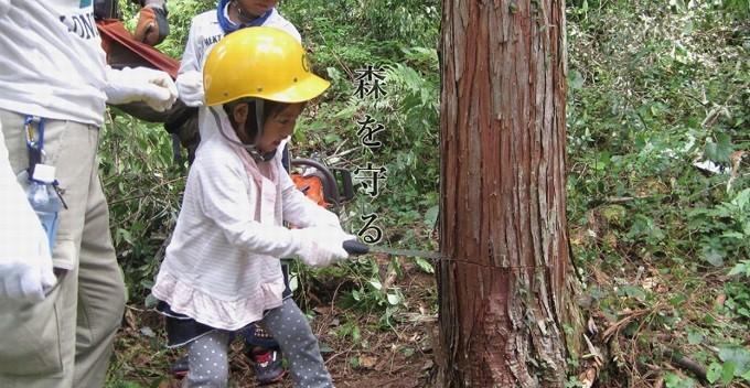 私たちは森林を守り次代につなぐ責任があります。