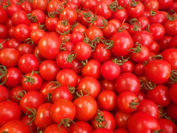みずみずしくて、甘いフルティカトマトを是非ご賞味ください