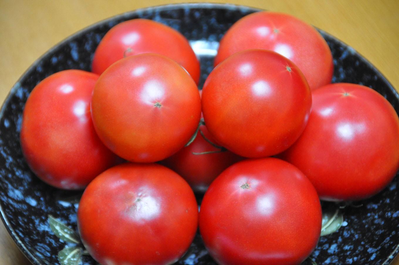 真っ赤に熟れた「大様トマト」を是非!召し上がってください!
