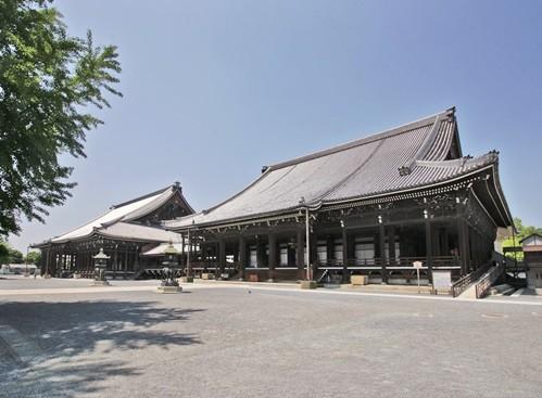 阿弥陀堂(右)と御影堂(左)(提供:本願寺)
