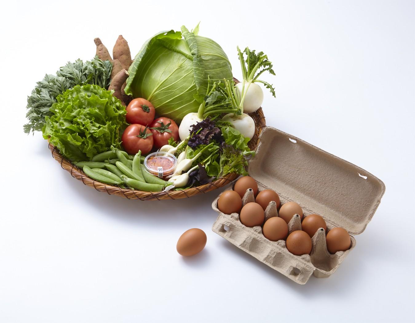 松浦海のふるさと館『旬のお野菜+産みたて濃厚玉子』の大満足セット!
