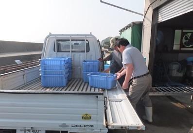 3.漁船から加工場へ