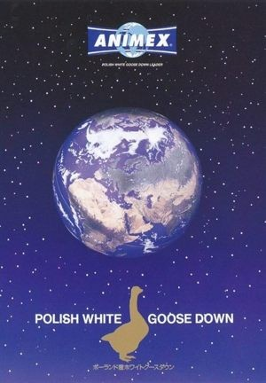 ポーランド産ホワイトグースダウン