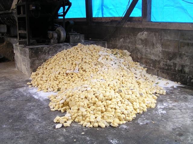 冷凍パン生地を製パン工場から