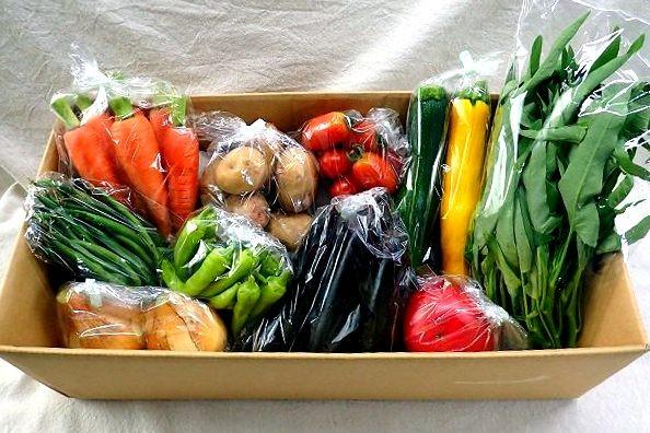 有機JAS認証「しあわせ野菜畑で育てた有機野菜セット」お届けします♪