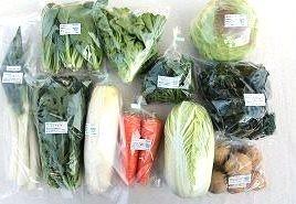 3月の有機野菜セットの例