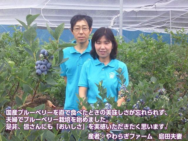 やわらぎファームの島田さんご夫妻