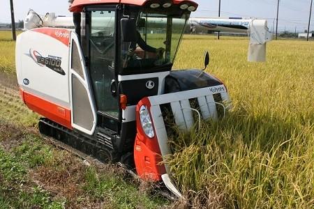 10月中旬に稲刈り・11月上旬から出荷開始!