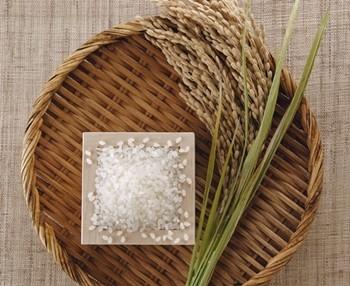 【その②】玄米の低温貯蔵