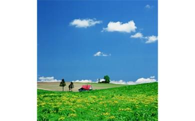 ②メルヘンの丘