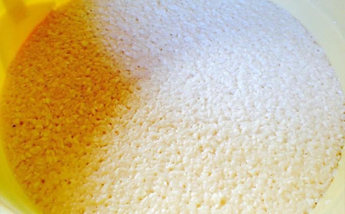 発酵により豊富な栄養素を蓄えます