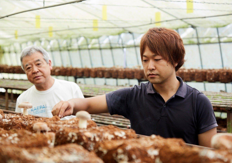 椎茸栽培の伝統は、父から子へ