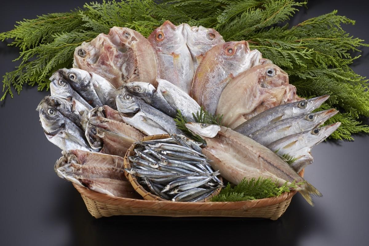 長崎で漁獲された鮮度の良い魚を手早く開きにしました!