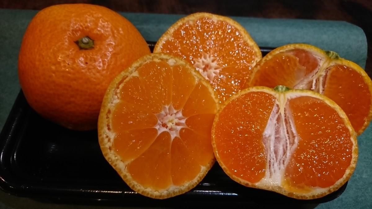 年間で一番甘味が増し、程よい酸味と濃厚な果汁がマッチする晩生みかん!