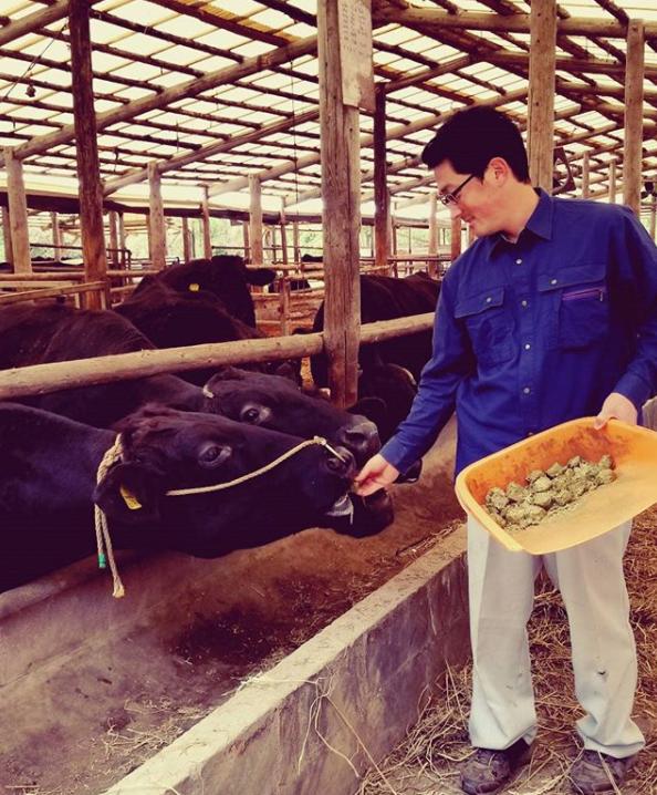 生産者の手から餌を食べるほど、大切に育てられている牛たち