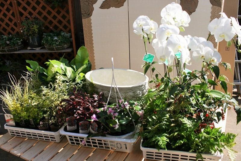 10~15種、50~70ポットの花を使用して作ります。