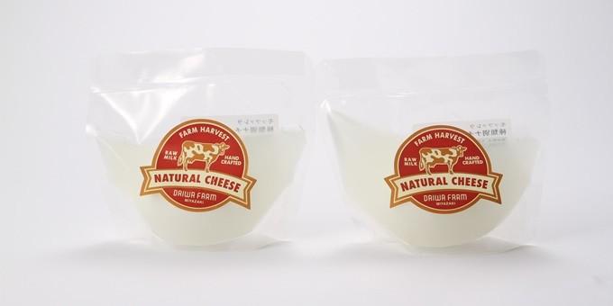 モッツァレラチーズ100g前後×2