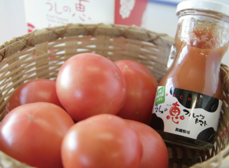 トマトジュースとフルーツトマトの両方味わえるお得なセット!