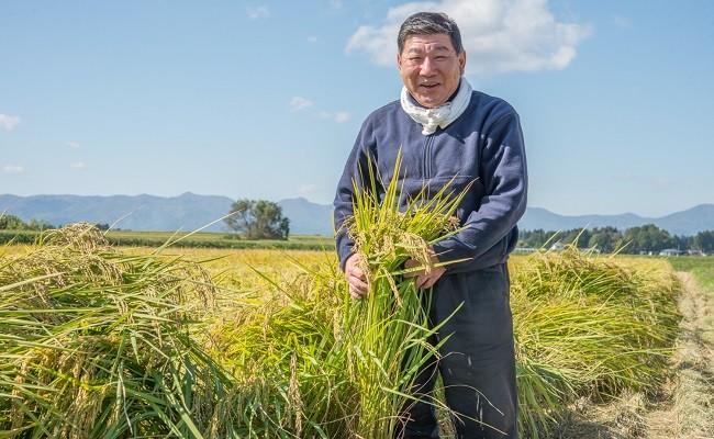 豊かな自然と愛情がたっぷり詰まって生産されたお米です!