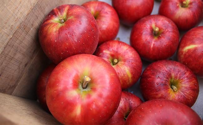 甘く蜜の詰まったりんごがジュースに!