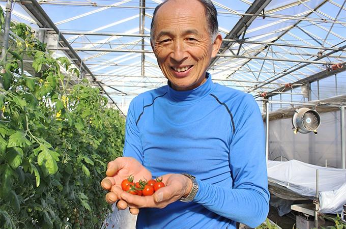 安心安全で栄養満点のトマト&プチトマト、ぜひ毎日食べてください♪