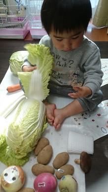 おもしろ顔シールを野菜に貼ってます