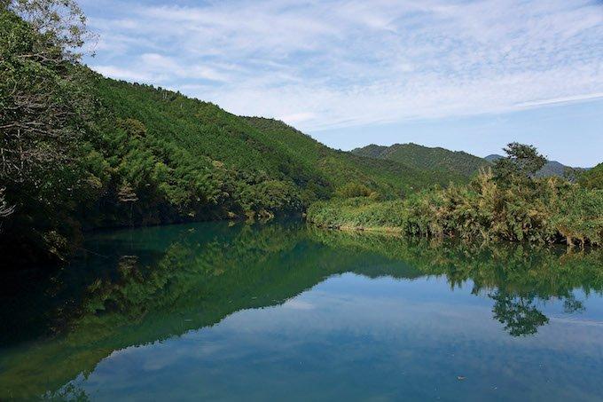 四万十川の水がおいしいお米を育てます