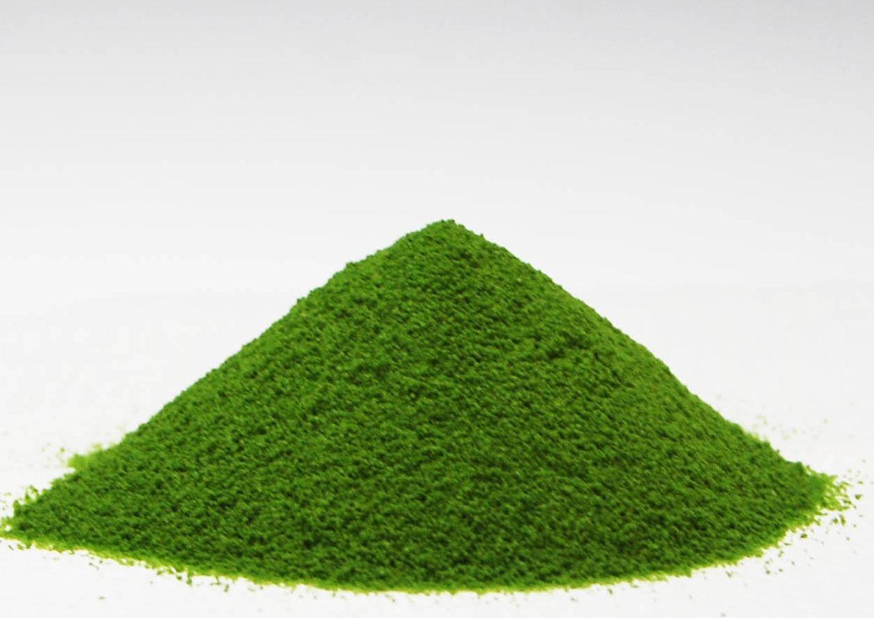 掛川産抹茶は大変色鮮やかで、クセのないスッキリとした味わい♪