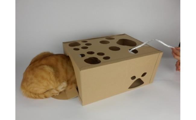 一緒にお届けする「にゃんBOX」。かくれんぼ好きなネコちゃんが大興奮!