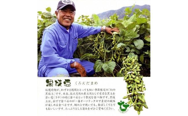丹波黒大豆枝豆(さや)