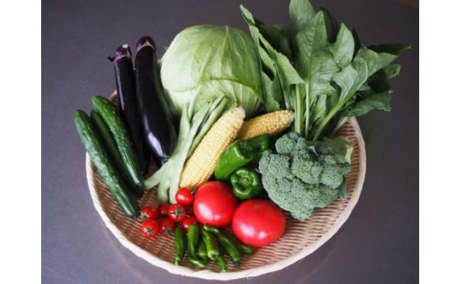 その時期に採れた野菜を直送!