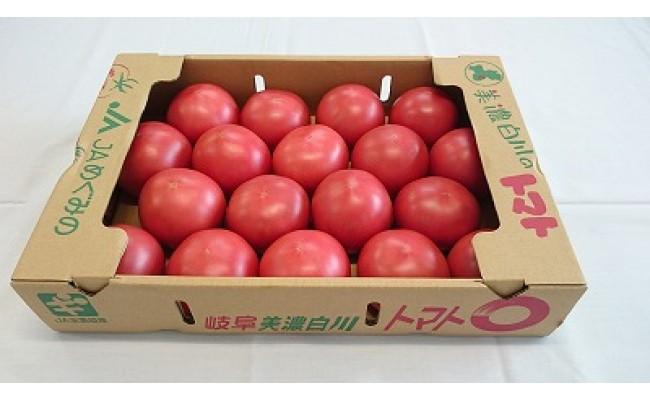 美濃白川のトマト