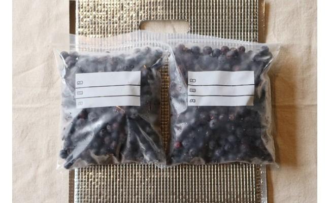 【朝来市産】冷凍完熟ブルーベリー(農薬不使用) 1,125g