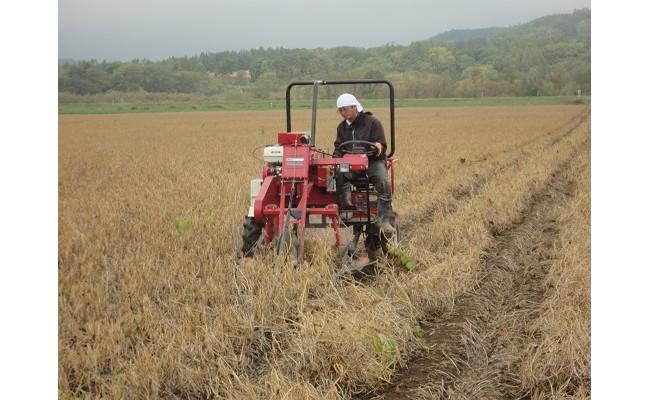 トラクターに刈り取られる小豆