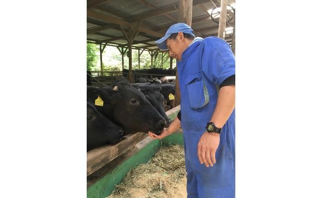 むなかた牛の飼育環境