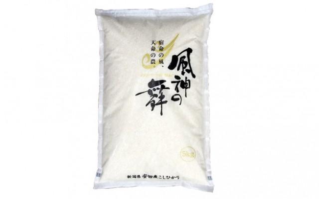 風を宿命として農に生きる「風神の舞」(コシヒカリ) 10kg 【H29年産新米】