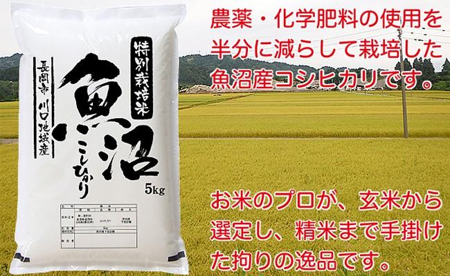 特別栽培米 新潟県魚沼産コシヒカリ(長岡川口地域)5kg