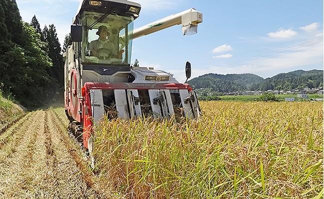 【3ヶ月連続お届け】新潟県長岡産特別栽培米コシヒカリ5.5kg【令和元年産】