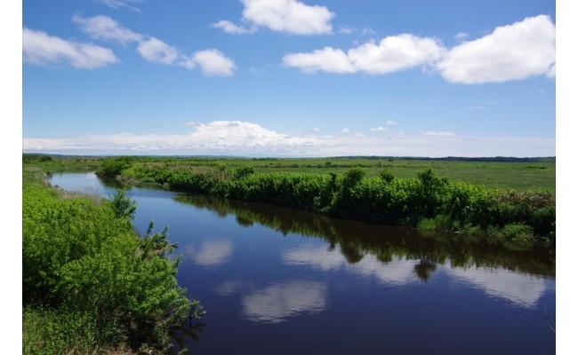 サロベツ川