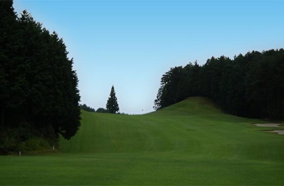 14.むらさき野カントリークラブ (ゴルフプレー割引券)