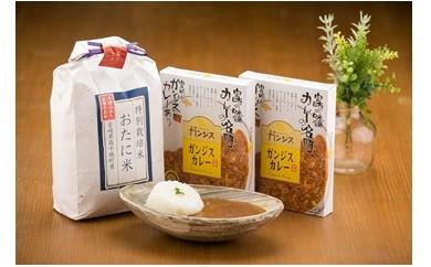 商品番号04 県産米&カレーセット