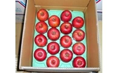 りんごCA-1 たてしなップル秀逸りんご