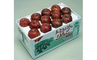 りんごCA-2 サンふじ特選
